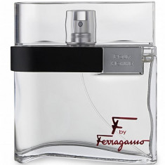 SALVATORE FERRAGAMO F BY FERRAGAMO Туалетная вода мужская 100мл Salvatore Ferragammo